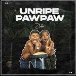 Music : ZLATAN – UNRIPE PAWPAW