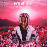 Music :Picazo – Rest Of Mind