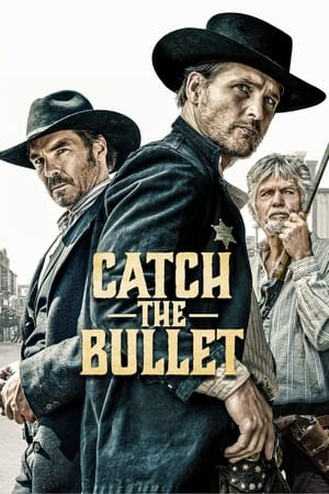 movie Catch the Bullet (2021)